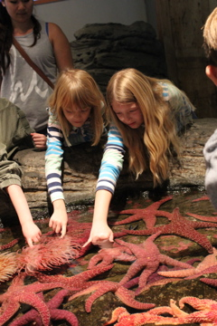 Daughters touching anemones.