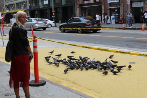 On our way, we saw a ton of pigeons being fed by a lady in a red dress. Bert would have been in heaven.