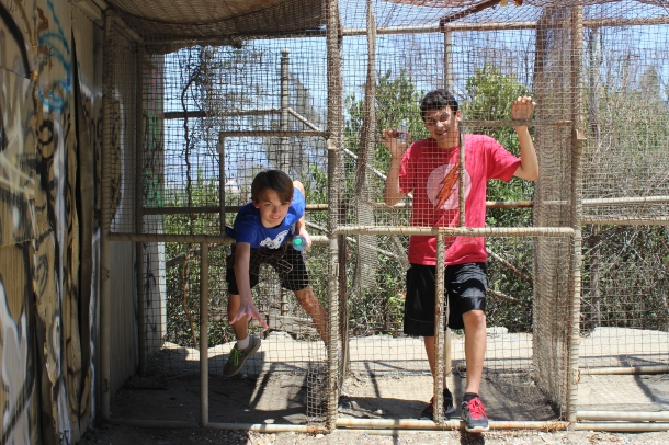 boys in cages